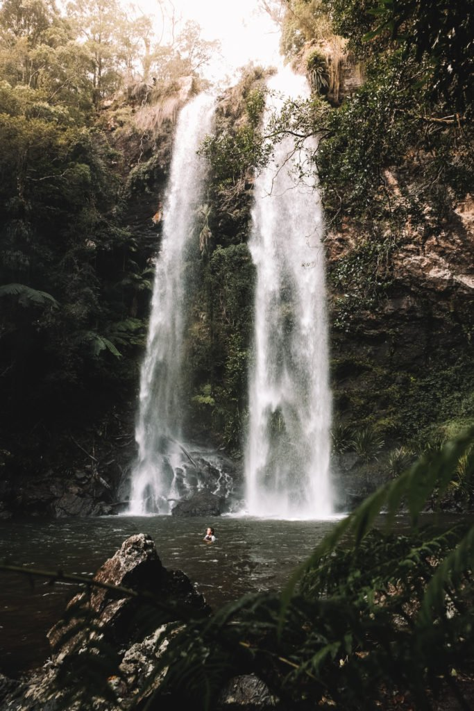hiking to Twin Falls Waterfall in Springbrook National Park