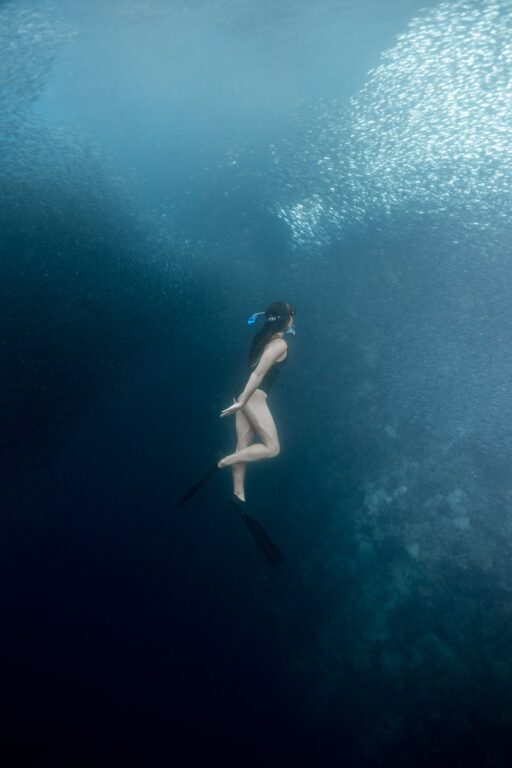 swimming with the moalboal sardine run in panagsama beach moalboal cebu