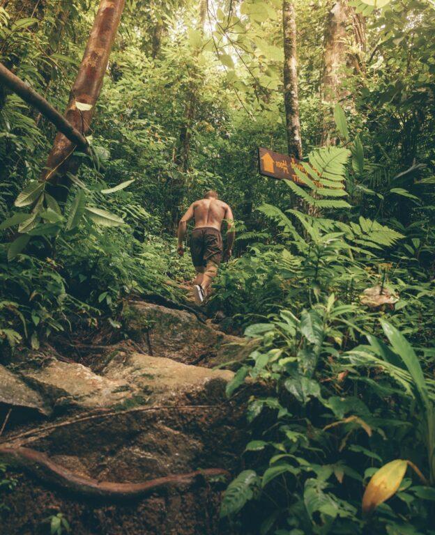 hiking in khao lak