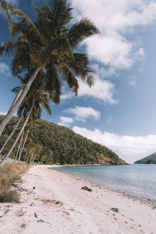 South Molle Island Beach