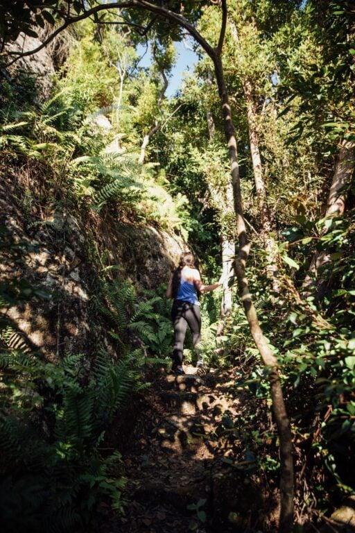 climbing whitsunday peak