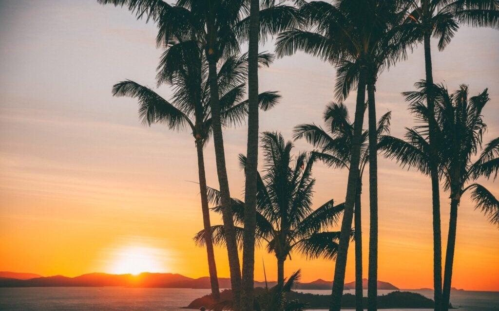 one tree hill best sunset point on hamilton island