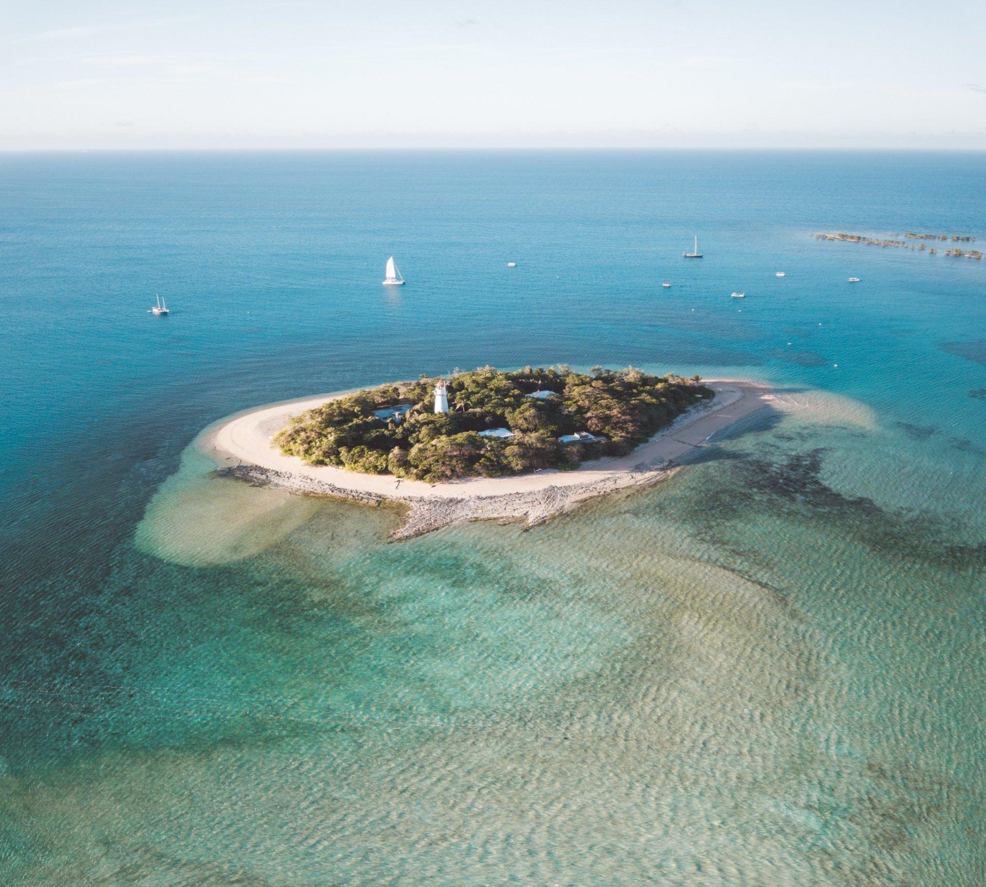 Low Island, Low Isles, Port Douglas