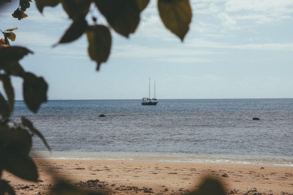 Beach on Low Island, Port Douglas