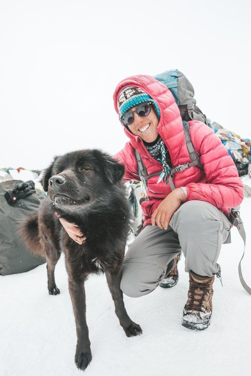 HIMALAYAN DOG, TOP OF THE CHO LA PASS NEPAL THREE HIGH PASSES TREK