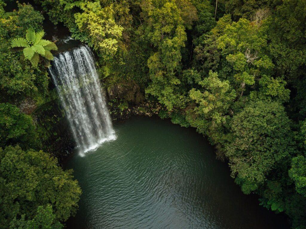 MILLAA MILLAA DRONE PHOTO WATERFALL