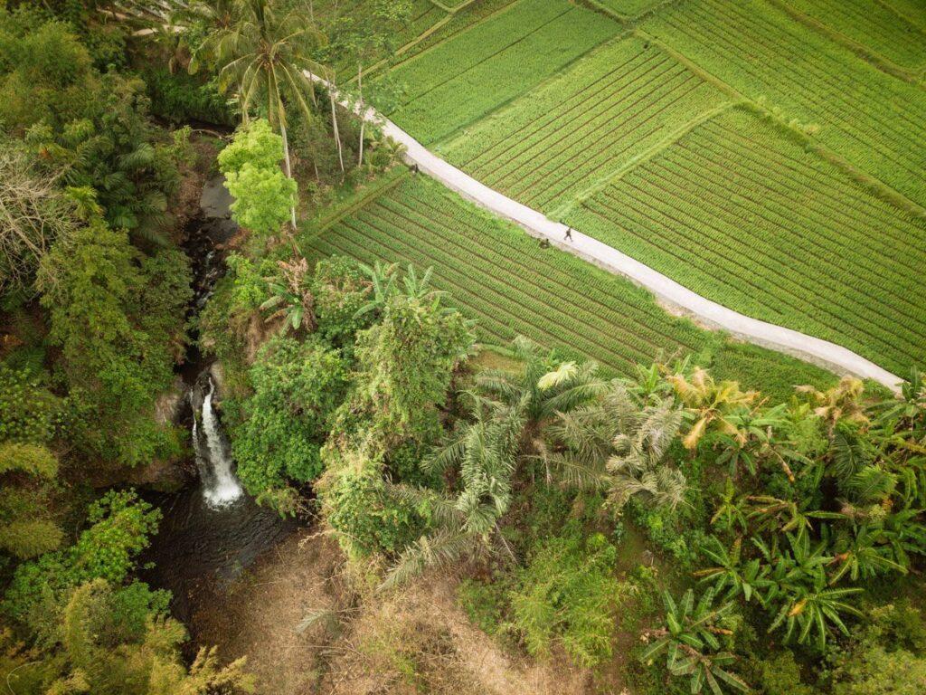 AERIAL DRONE PHOTO OF TIBU BUNTER WATERFALL. LOMBOK RICE PADDIES
