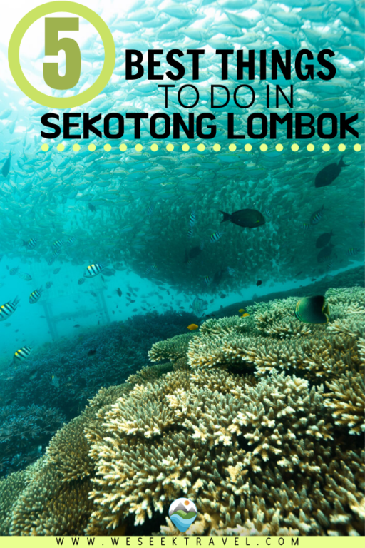 Best things to do in Sekotong Lombok