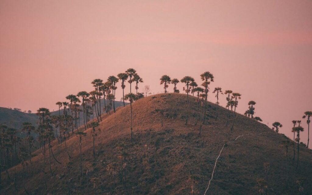 LABUAN BAJO SUNSET HILL