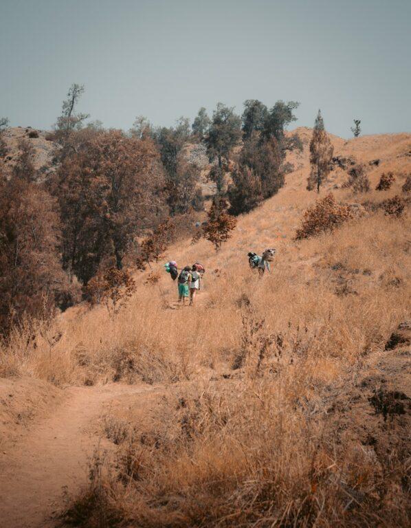 MOUNT RINJANI CRATER RIM TREKKING