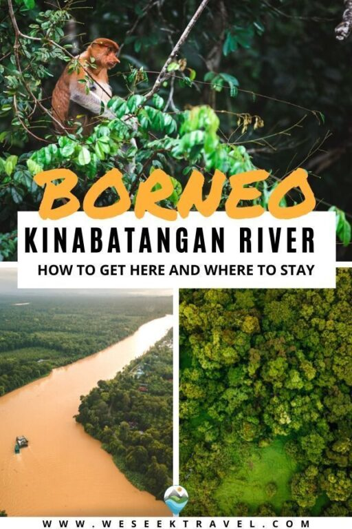 How To Get To Kinabatangan River and Where to Stay