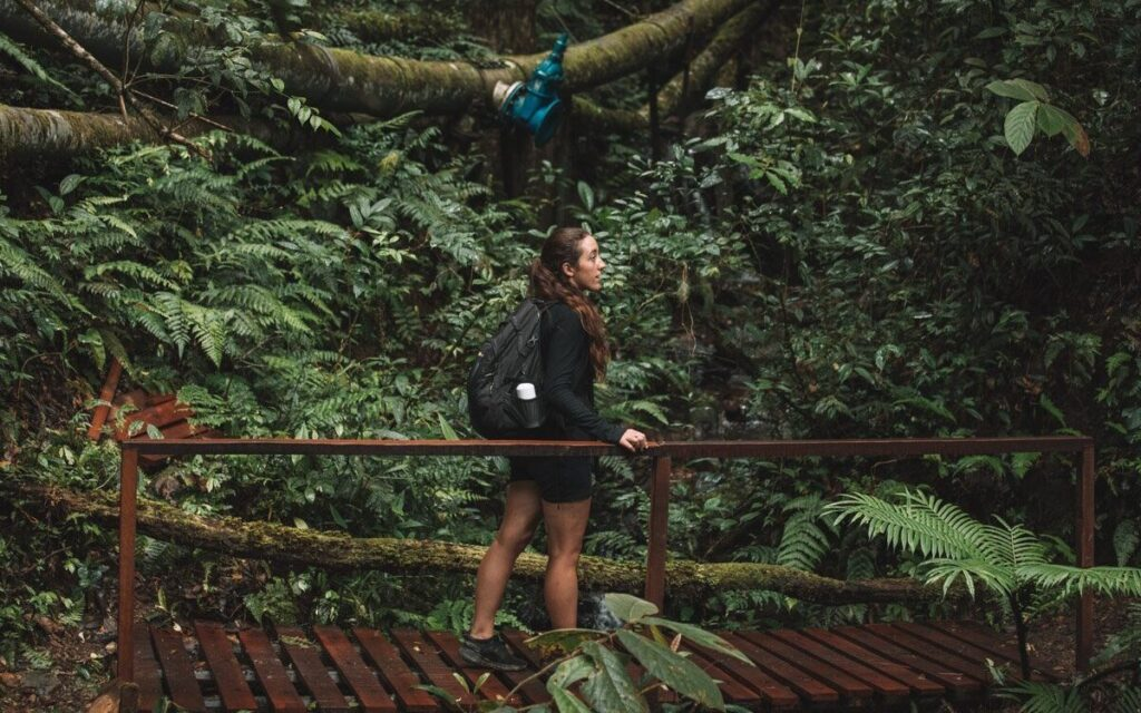 WHAT TO DO IN KINABALU PARK, HIKING TRAILS