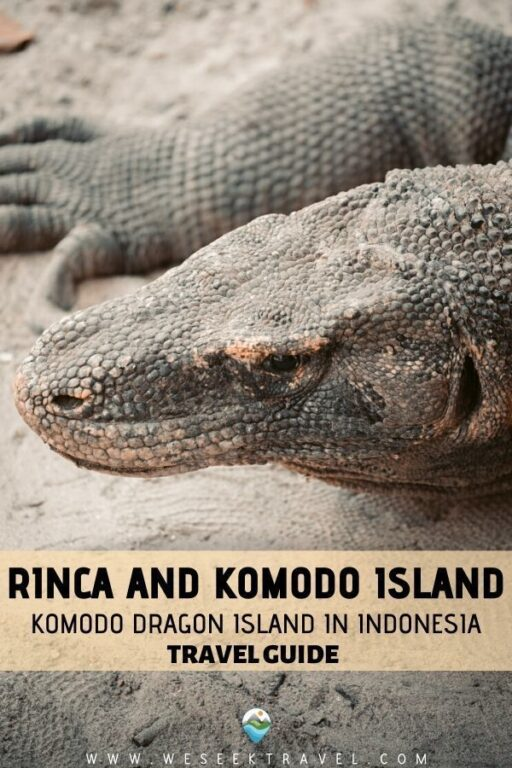 Rinca and Komodo Island: Komodo Dragon Island in Indonesia - TRAVEL GUIDE