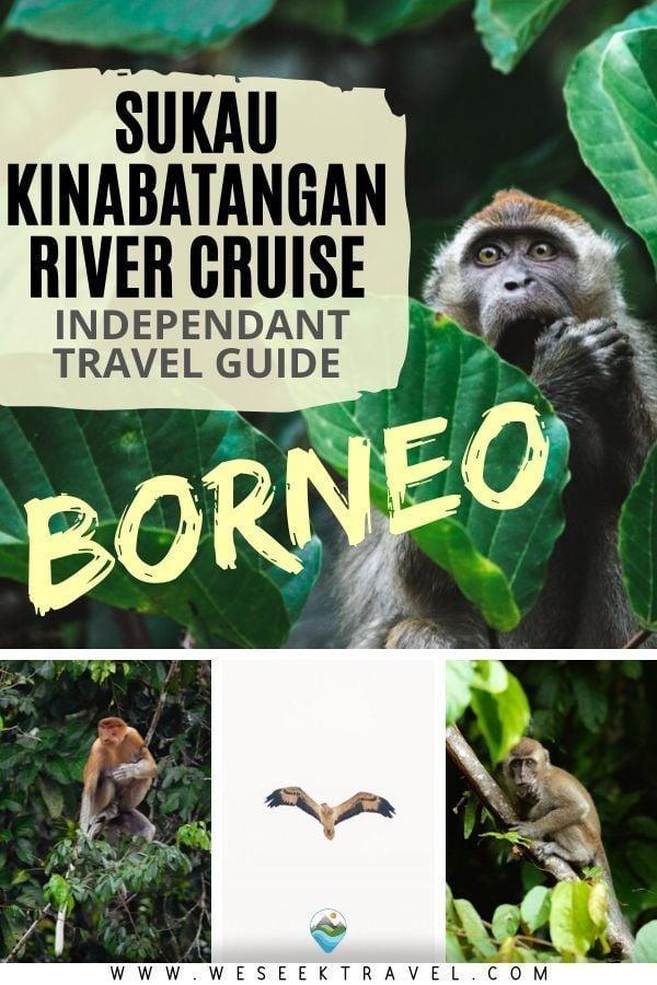 Sukau Kinabatangan River Cruise - Independant Travel Guide