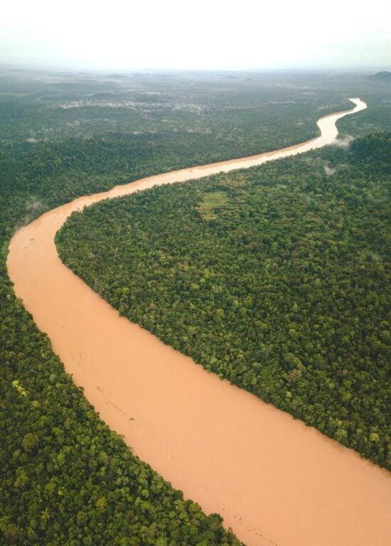 Kinabatangan River drone