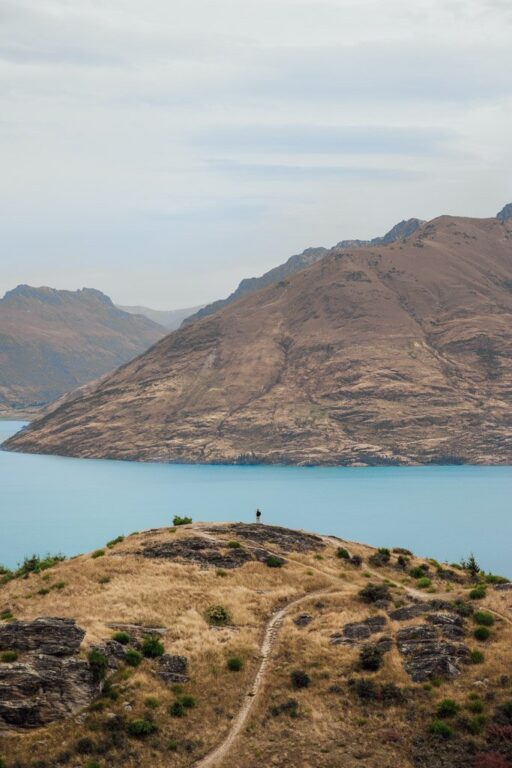 QUEENSTOWN HILL SUMMIT TRACK, BEST HIKES IN SOUTH ISLAND NEW ZEALAND