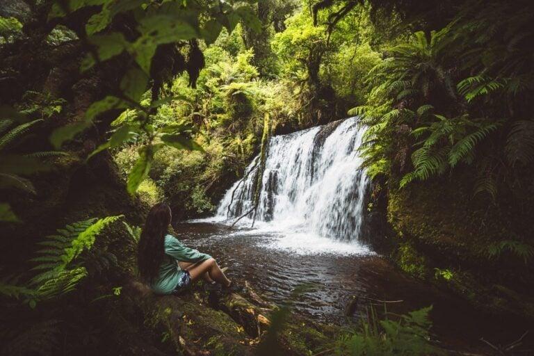 PUNEHU WATERFALL CATLINS NEW ZEALAND