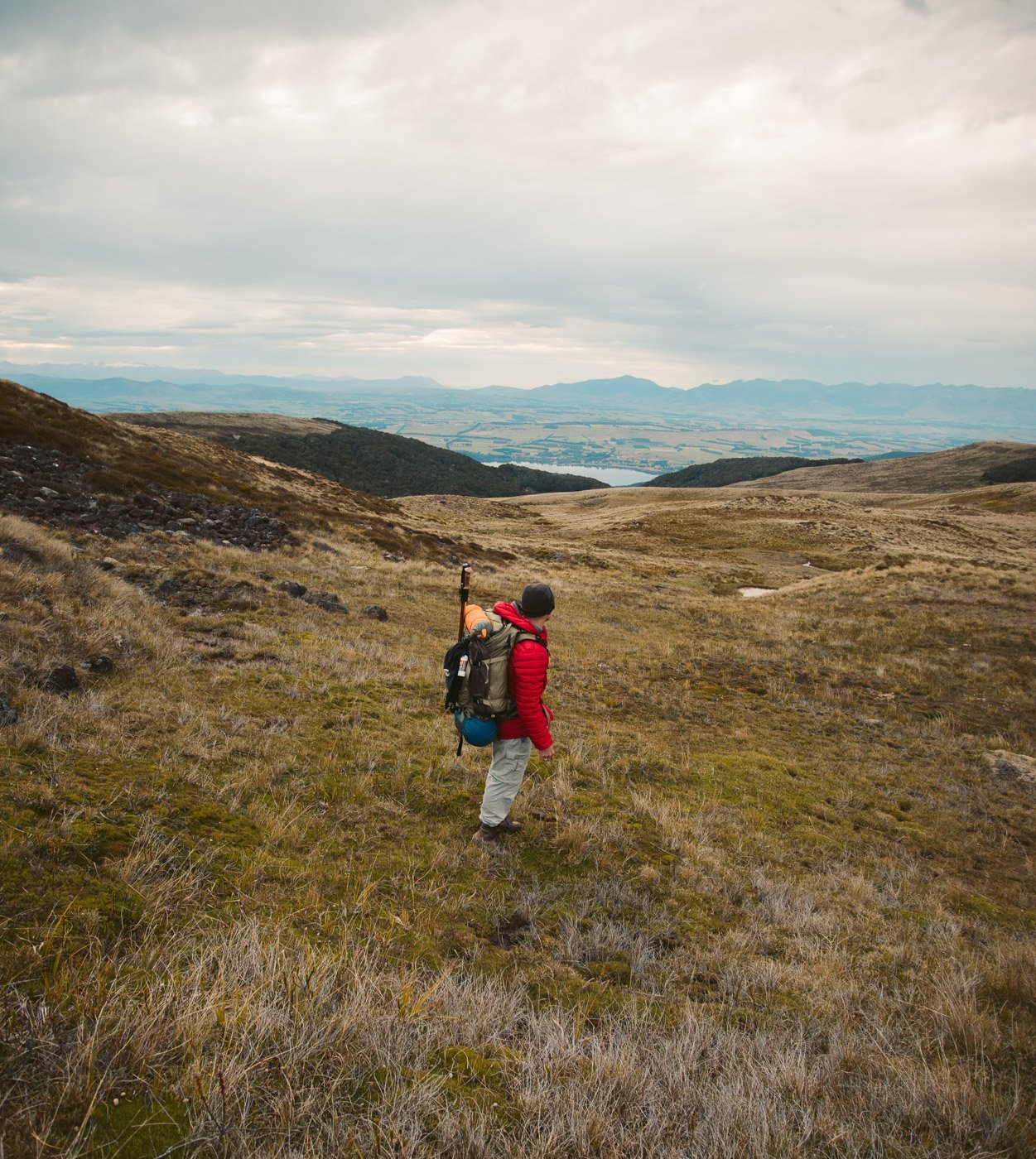 TUSSOCK PLAINS HIKING NEAR THE LUXMORE HUT ON THE KEPLER