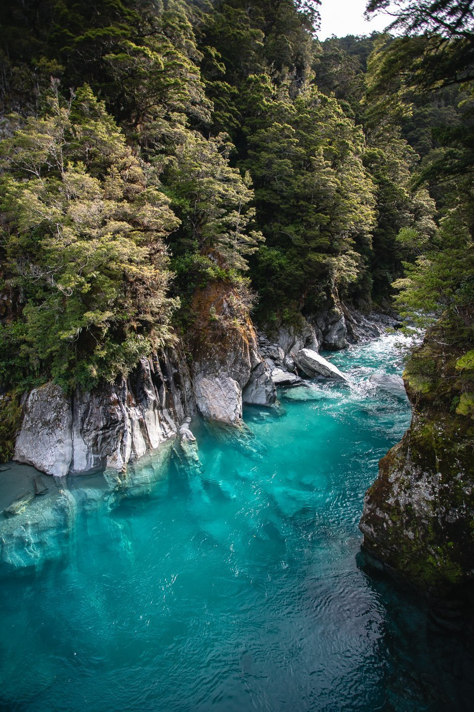 The blue pools swimming area, Mount Aspiring National Park