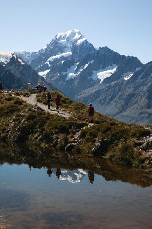 SEALY TARNS TRACK NEW ZEALAND