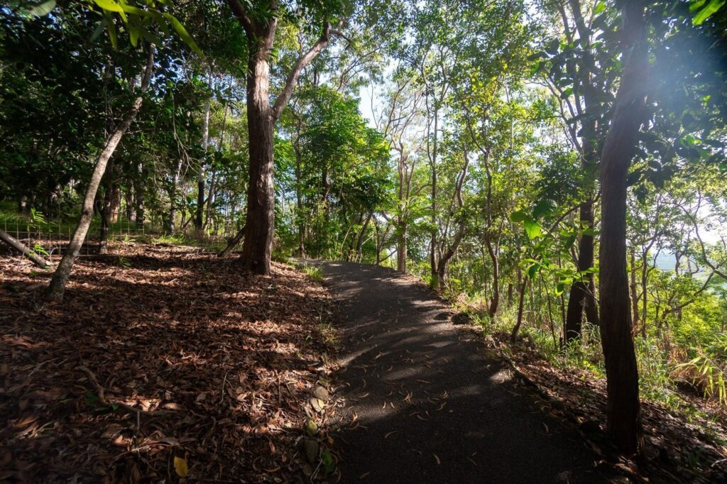 Red Arrow Track in Cairns