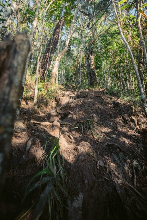 Steep descent to White Rock Lookout