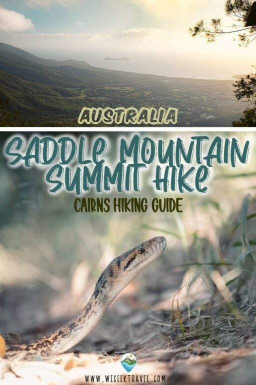 SADDLE MOUNTAIN SUMMIT HIKE CAIRNS HIKING GUIDE