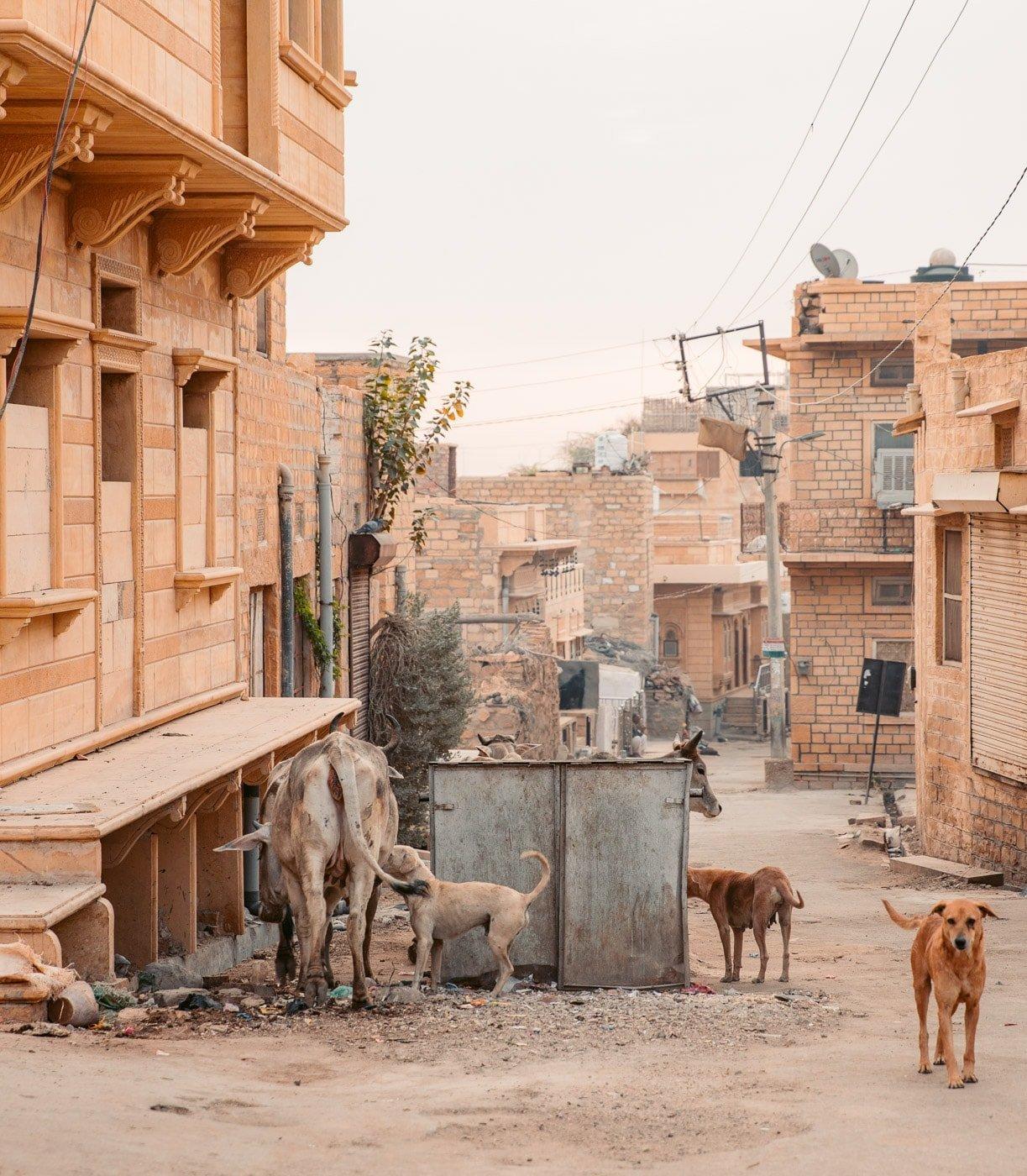 STREETS OF JAISALMER INDIA