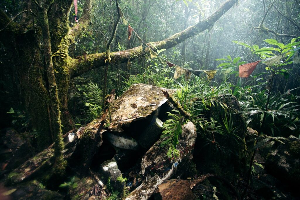 Mount WILLIAM PLANE WRECK STONEY CREEK, CAIRNS HIKES & WALKING TRACKS