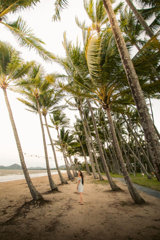 PALM COVE, BEST BEACHES IN CAIRNS