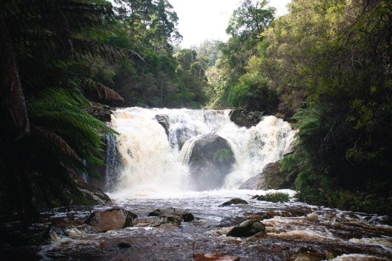 HALLS FALLS WATERFALL TASMANIA