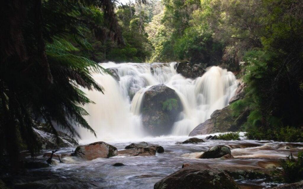 HALLS FALLS TASMANIA, WATERFALL AND HIKING GUIDE