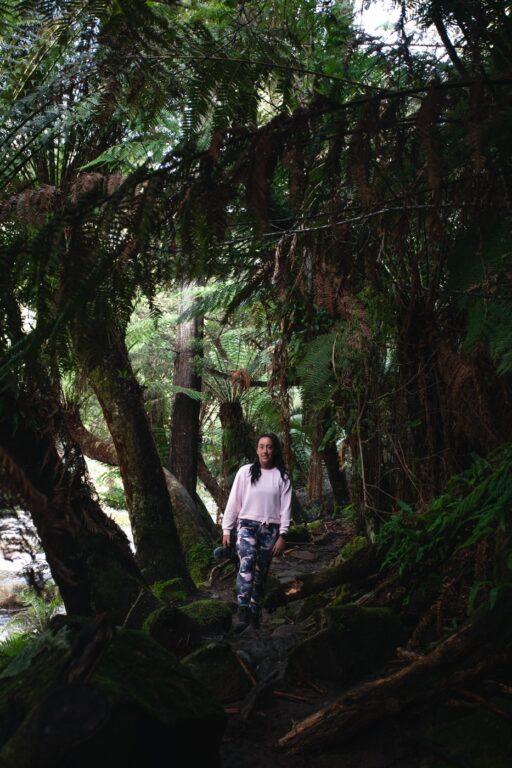 HALLS FALLS WALKING TRACK TASMANIA