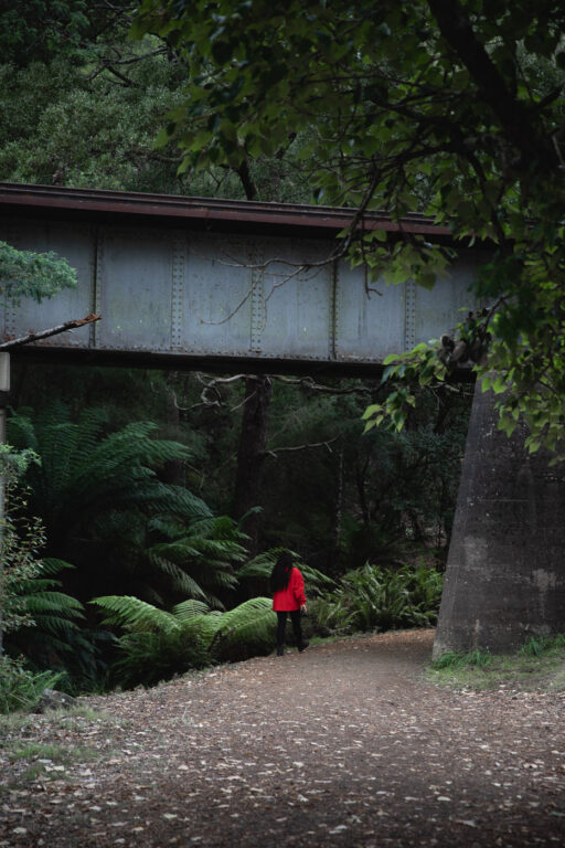 RAILWAY BRIDGE ON THE LILYDALE FALLS WALK TASMANIA