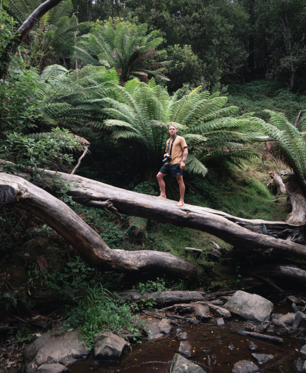 EXPLORING LILYDALE FALLS RESERVE FREE CAMPING AREA