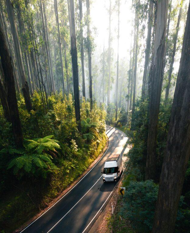 Van driving through Black Spur Drive