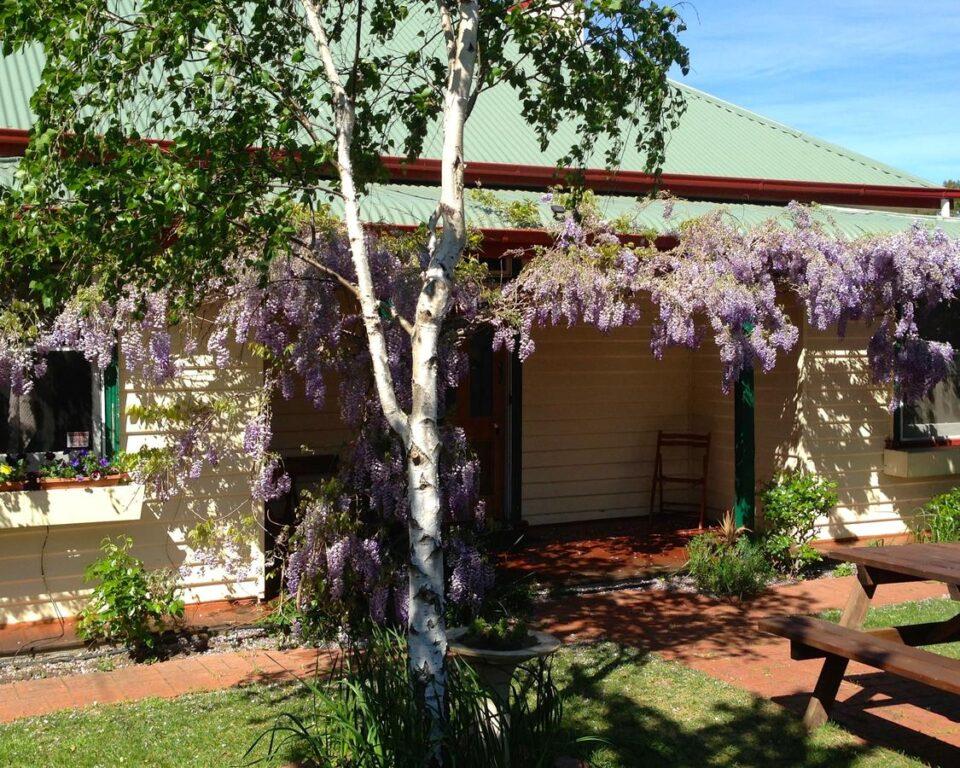 Triabunna cabin and caravan park tasmania