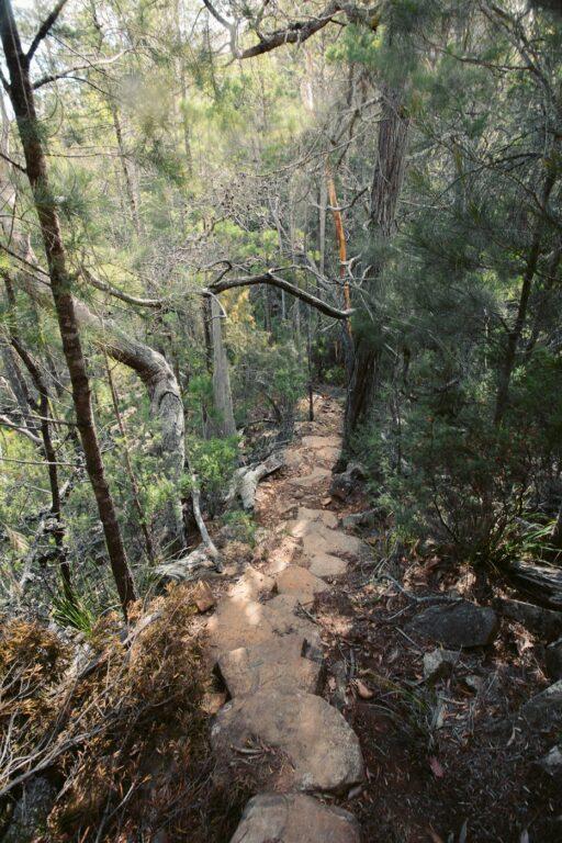 DOUGLAS APSLEY NATIONAL PARK WALKING TRACK TASMANIA