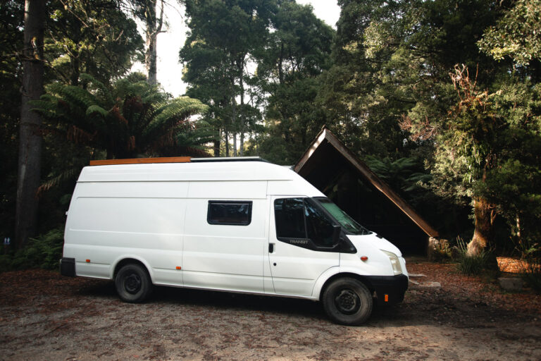 CAMPING AT EVERCREECH FOREST RESERVE