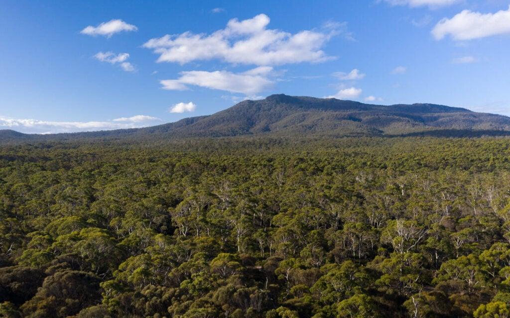 MOUNT MARIA TASMANIA