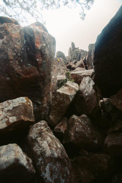 MOUNT MARIA CLIMB TASMANIA