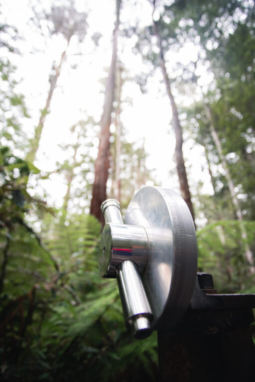 MEASURING THE HEIGHT OF THE WORLDS TALLEST TREES IN TASMANIA