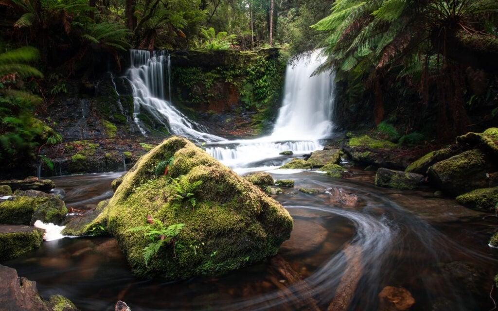THREE FALLS CIRCUIT WALK AND TALL TREES WALK IN MOUNT FIELD NATIONAL PARK TASMANIA