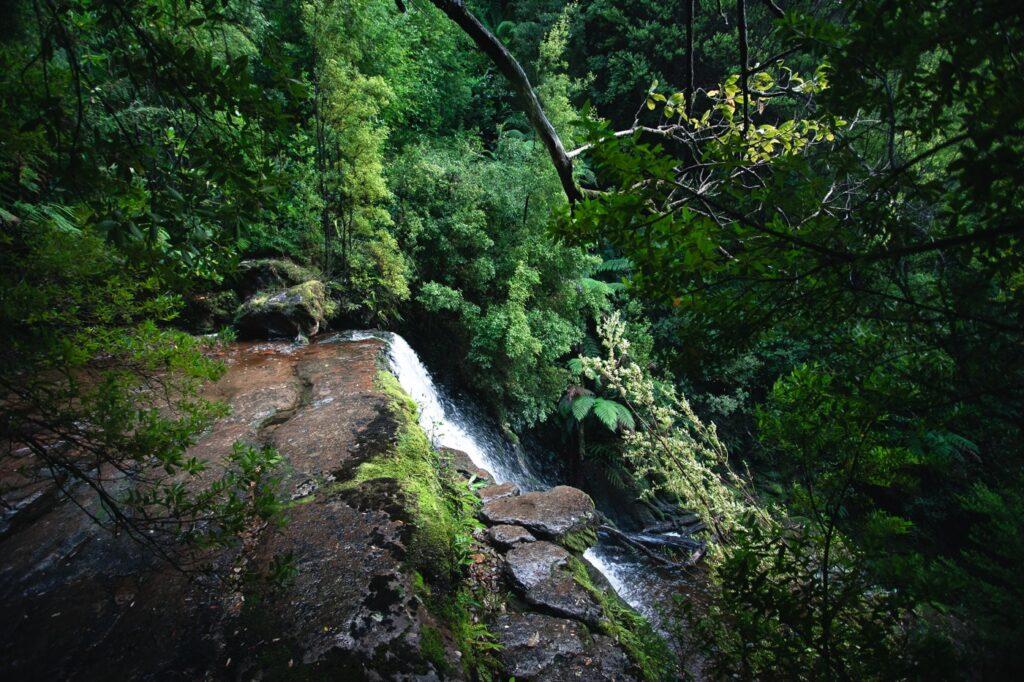 ADAMSONS FALLS WATERFALL IN TASMANIA