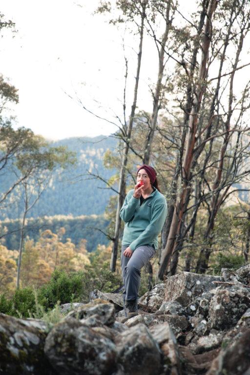 DISAPPEARING TARN TRACK T WELLINGTON FALLS TASMANIA