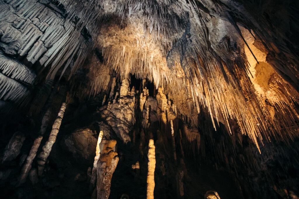 HASTINGS CAVES AND THERMAL SPRINGS TASMANIA