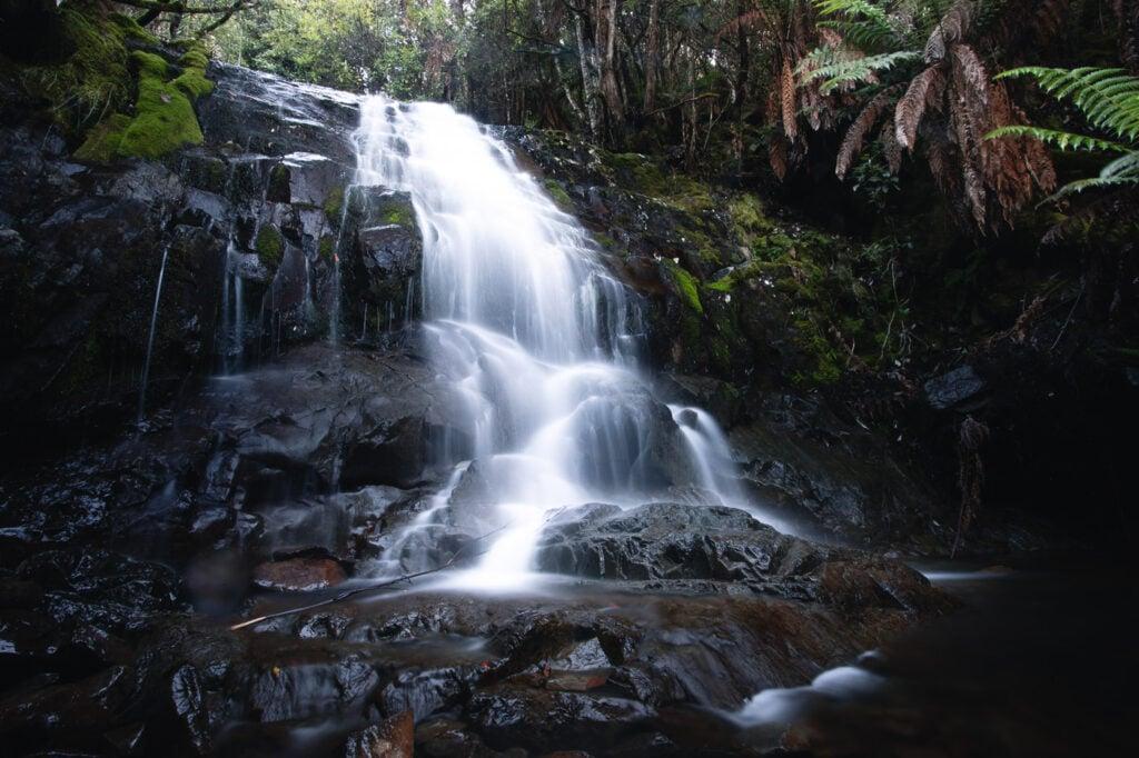 MYRTLE FOREST FALLS TASMANIA