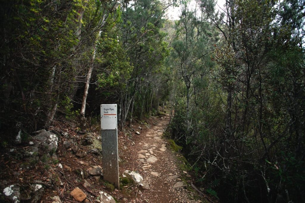 ORGAN PIPES TRACK, MOUNT WELLINGTON HIKE
