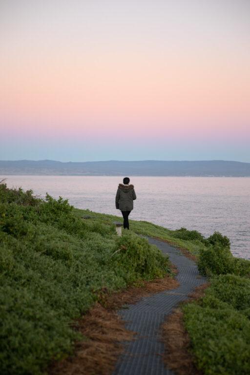 WALKING TRACKS ON PICNIC ISLAND