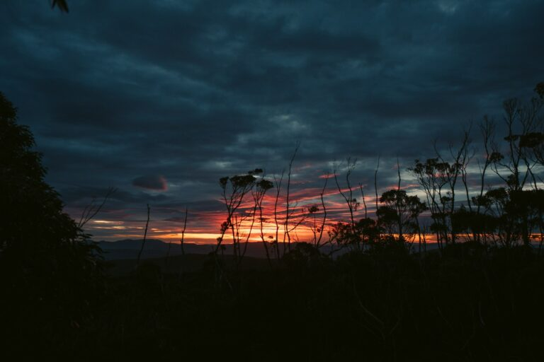HARTZ MOUNTAINS SUNRISE IN TASMANIA